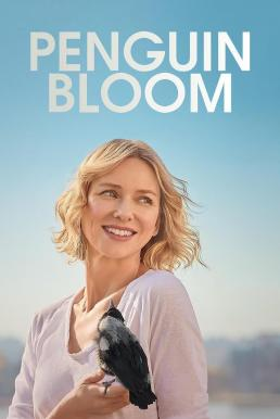 Penguin Bloom | Netflix (2020) เพนกวิน บลูม